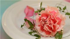 浪漫色系午茶
