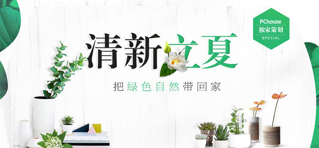 清新夏日 把绿色自然带回家