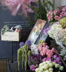 FlowerTimes