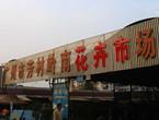 搭车地铁买家具-广州岭南花卉市场